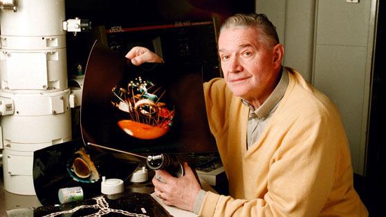 Photo of Fascinantne fotografije Lennarta Nilssona o nastanku čovjeka – Zar i dalje sumnjaš u Stvoritelja