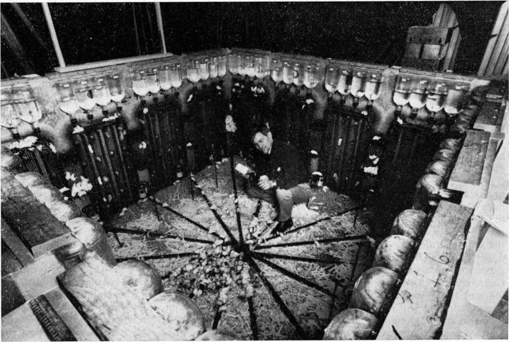 "Photo of ""Svemir miševa"" – Čuveni eksperiment iz 1968."