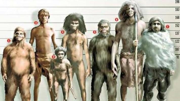 Photo of Tri najpoznatija falsifikata evolucionista