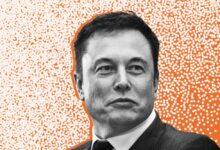 Photo of Elon Musk: od šmokljana do najbogatijeg čovjeka na svijetu